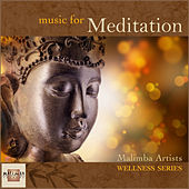 Play & Download Music for Meditation by Various Artists | Napster
