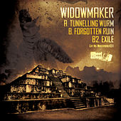 Tunneling Wurm / Forgotten Ruin / Exile by Widowmaker