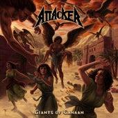Attacker: