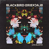 Love Unlimited by Blackbird Blackbird