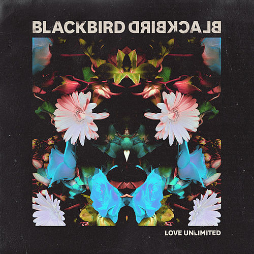 Play & Download Love Unlimited by Blackbird Blackbird | Napster