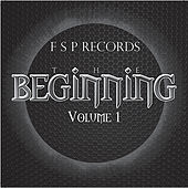 F S P Records the Beginning Vol. 1 by Various Artists