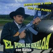 Play & Download Entre Pase Y Pase by El Puma De Sinaloa   Napster