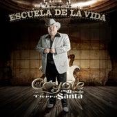 Play & Download Escuela De La Vida by El Coyote Y Su Banda | Napster