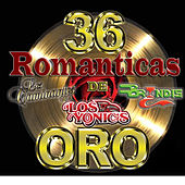 Play & Download 36 Romanticas de Oro by Various Artists | Napster
