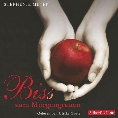 Bella und Edward, Folge 1: Biss zum Morgengrauen von Stephenie Meyer