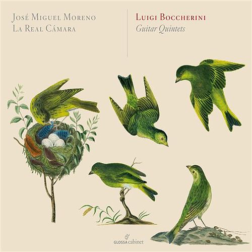 Play & Download Boccherini: Guitar Quintets by José Miguel Moreno | Napster