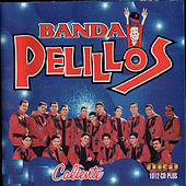 Play & Download Caliente by Banda Pelillos | Napster