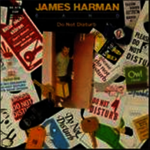 Play & Download Do Not Disturb by James Harman Band | Napster