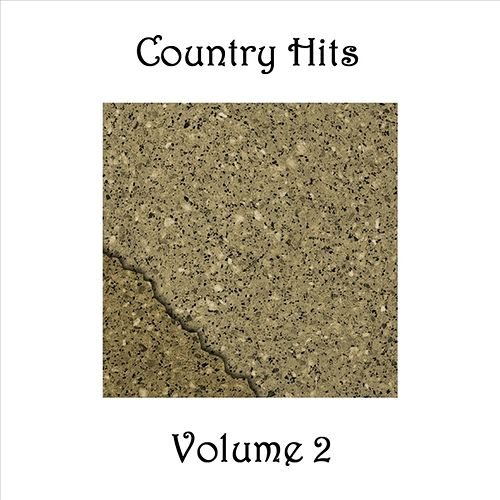 Country Hits - Volume 2 by Various Artists