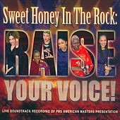 Play & Download Raise Your Voice by Sweet Honey in the Rock | Napster