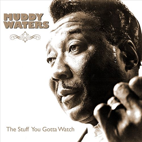 Play & Download The Stuff You Gotta Watch by Muddy Waters | Napster