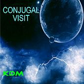 Conjugal Visit - EP by Various Artists