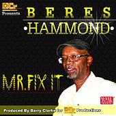 Play & Download Mr. Fix It by Beres Hammond | Napster