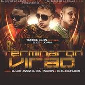 Play & Download Terminaron Virao (feat. D.Ozi & Jovah) by Trebol Clan | Napster