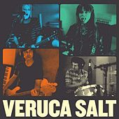 It's Holy by Veruca Salt