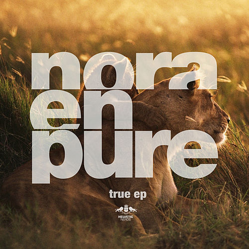 Play & Download True by Nora En Pure | Napster