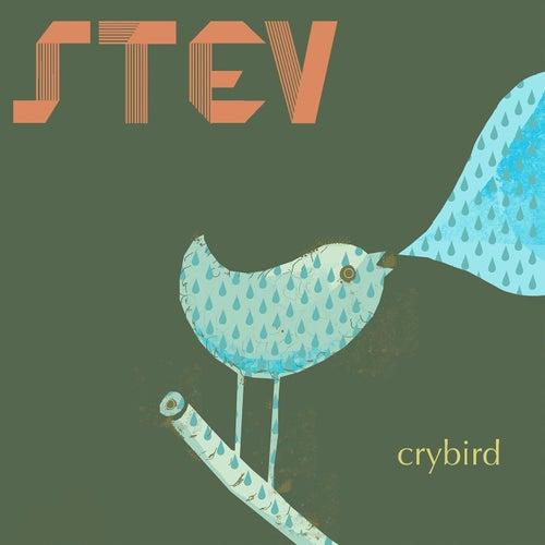 Crybird by Stev