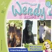 Einsteiger Bundle (Angst um Lindenhöhe / Wendy muss gewinnen / Meine Freundin Penny) von Wendy