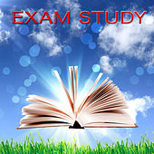 Play & Download Exam Study - Relaxing New Age Concentration Music for Studying, Brain Food to Increase Brain Power & Concentration With Nature Sounds by Exam Study Classical Music Orchestra | Napster