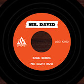 Play & Download Soul Skool Digital 45 - Single by Mr. David | Napster