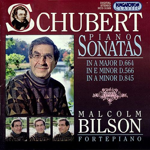 Play & Download Schubert: Piano Sonatas, Vol. 4: Nos. 6, 13 and 16 by Malcolm Bilson | Napster