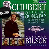 Schubert: Piano Sonatas Nos. 4 and 20 by Malcolm Bilson