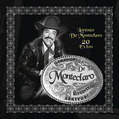Play & Download 20 Exitos by Lorenzo De Monteclaro | Napster