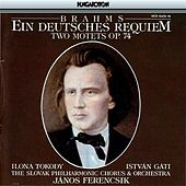 Play & Download Brahms: Deutsches Requiem (Ein) / 2 Motets by Various Artists | Napster