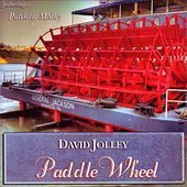 Paddle Wheel by David Jolley