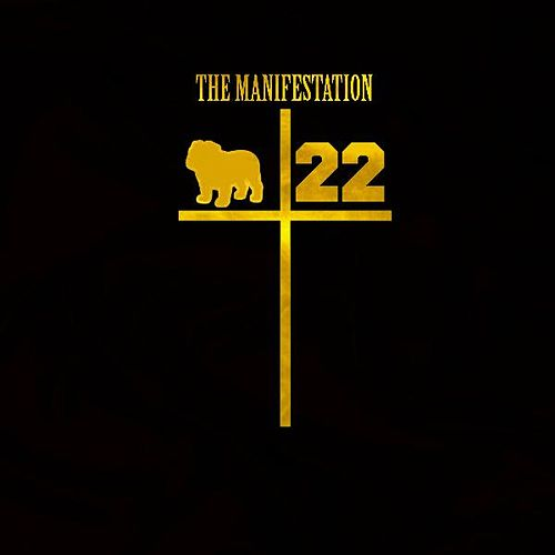 The Manifestation by Camel