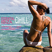 Play & Download Essential Chill Ibiza by Various Artists | Napster