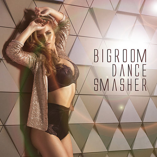 Bigroom Dance Smasher by Various Artists