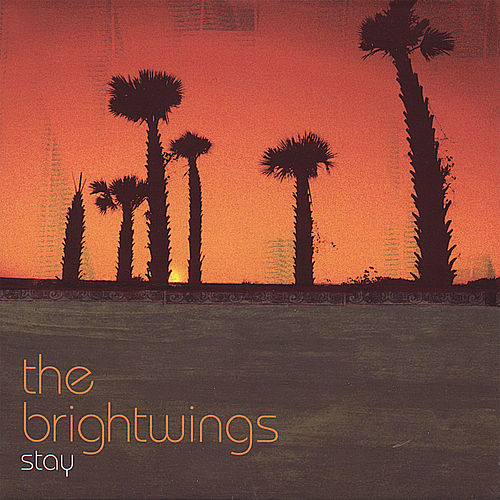 Play & Download Stay by The Brightwings | Napster