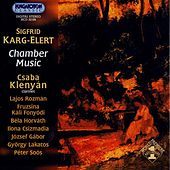 Karg-Elert: Chamber Music by Various Artists