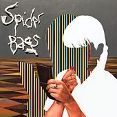 Play & Download Japanese Vacation by Spider Bags | Napster