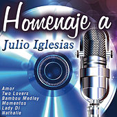 Play & Download Homenaje a Julio Iglesias by Various Artists | Napster
