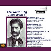 The Waltz  King by Various Artists