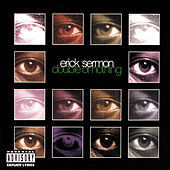 Double Or Nothing by Erick Sermon