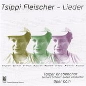 Fleischer: Lieder by Various Artists