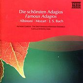 Play & Download Albinoni / Mozart / Bach: Famous Adagios by Various Artists | Napster