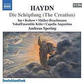 Play & Download Haydn: Schopfung (Die) (The Creation) by Sunhae Im | Napster
