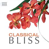 Play & Download Classical Bliss by Various Artists | Napster