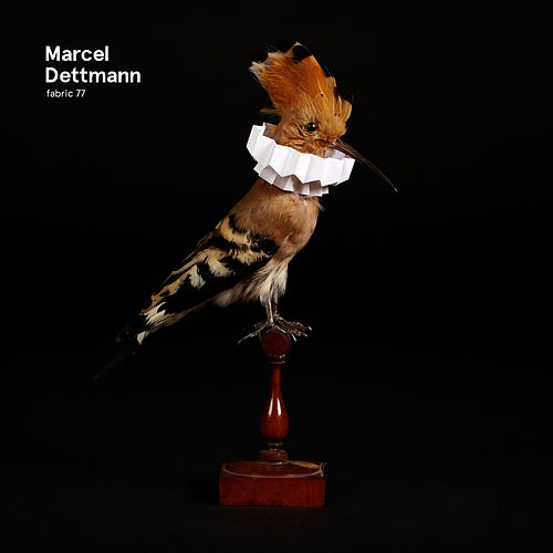 Play & Download fabric 77: Marcel Dettmann by Marcel Dettmann | Napster