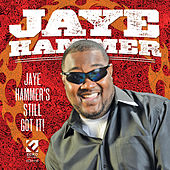 Jaye Hammer's Still Got It by Jaye Hammer