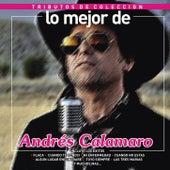 Lo Mejor de Andrés Calamaro / Tributo de Colección by Various Artists