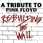 Play & Download Re-Building The Wall - A Tribute To Pink Floyd by Various Artists | Napster