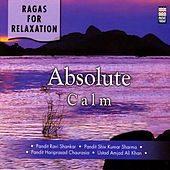 Play & Download Ragas For Relaxation - Absolute Calm by Various Artists | Napster
