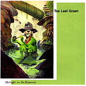 Play & Download Midnight On The Reservoir by Tea Leaf Green | Napster