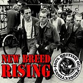 Play & Download New Breed Rising - 100% British Oi! by Various Artists | Napster